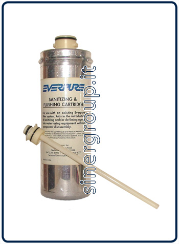 Everpure JT empty filter to sanitize descale