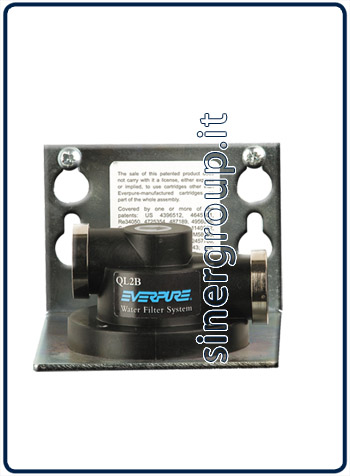 "Everpure QL2B replacement single filter head 3/8"" FPT (12)"